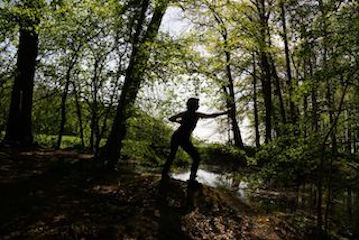 Kaha Bogen 2 Wald